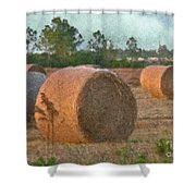 A Roll In The Hay Shower Curtain