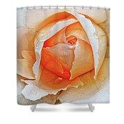 A Roses Tear Shower Curtain