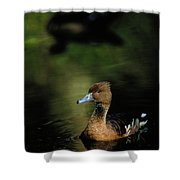 A Ruddy Duck Swims Through The Marsh Shower Curtain