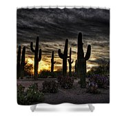 A Saguaro Sunrise  Shower Curtain