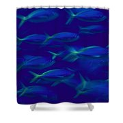 A School Of Fusilier Fish, Caesio Teres Shower Curtain