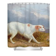 A Setter On The Moor Shower Curtain by Philip Reinagle