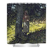 A Shady Spot Shower Curtain by Winslow Homer