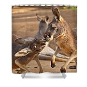 A Show Of Respect Shower Curtain