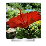 A Side Of Hibiscus Shower Curtain