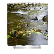 A Small Dam Of Golden Leaves  Shower Curtain