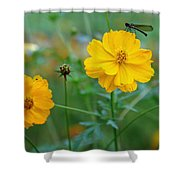 A Small Dragon Fly Sitting On A Yellow Flower Shower Curtain