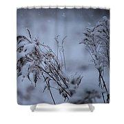 A Soft Coat Shower Curtain