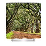 A Southern Lane Shower Curtain