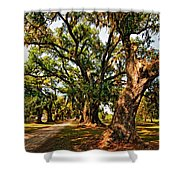 A Southern Stroll Shower Curtain