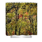 A Splash Of Fall Shower Curtain