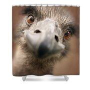 A Strange Look Shower Curtain