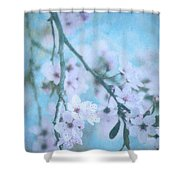 A Subtle Spring Shower Curtain