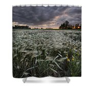 A Summer Sunrise With Storm Clouds Shower Curtain