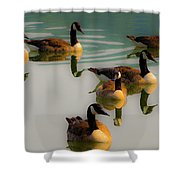A Swim At Sunset Shower Curtain
