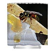 A Taste Of Honey Shower Curtain