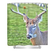 A Time For Prayer Shower Curtain