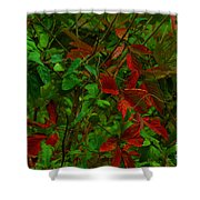 A Touch Of Christmas In Nature Shower Curtain