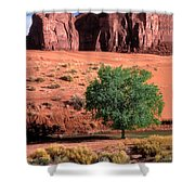A Touch Of Green At Monument Valley Shower Curtain