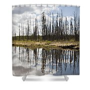 A Tranquil River With A Reflection Shower Curtain by Susan Dykstra