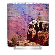 A Tree And The Canyon Shower Curtain