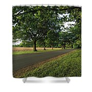 A Tree-lined Rural Virginia Road Shower Curtain
