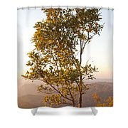 A Tree Outlined By The Rays Of The Setting Sun At Pachmarhi Shower Curtain