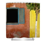 A Tree Outside A Colorful Building And Shower Curtain