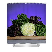 A Variety Of Lettuce Shower Curtain by Photo Researchers, Inc.