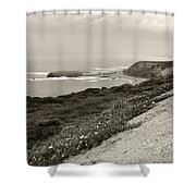 A View Central California Coast Shower Curtain