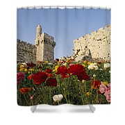 A View Of Flowers Growing Shower Curtain