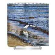 A Visit To The Beach Shower Curtain