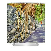 A Walk In The Grove Shower Curtain