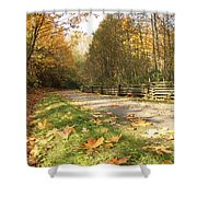 A Walk In The Park Shower Curtain