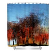 A Walk On The Esplanade Shower Curtain by Dana DiPasquale