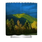 A Winding Autumn Road  Shower Curtain