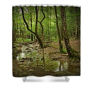 A Woodland Stream In Cades Cove No.472 Shower Curtain