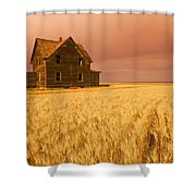 Abandoned Farm House, Wind-blown Durum Shower Curtain