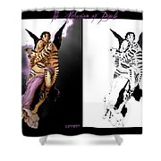 Abduction Of Psyche Shower Curtain