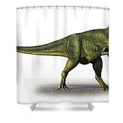 Abelisaurus Comahuensis, A Prehistoric Shower Curtain
