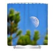 Above The Pines Shower Curtain
