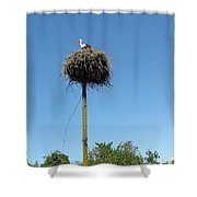 Above The Tree Tops Shower Curtain