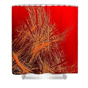 Abs 0095 Shower Curtain