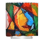 Abs 0269 Shower Curtain