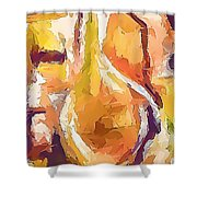 Abs 0270 Shower Curtain