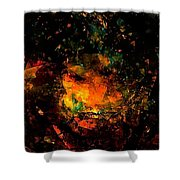 Abs 0353 Shower Curtain