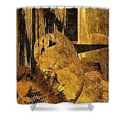 Abs 0362 Shower Curtain