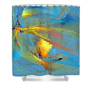 Abs 586 - Marucii Shower Curtain