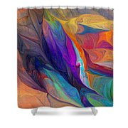 Abstract 021212 Shower Curtain