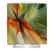 Abstract 021412a Shower Curtain